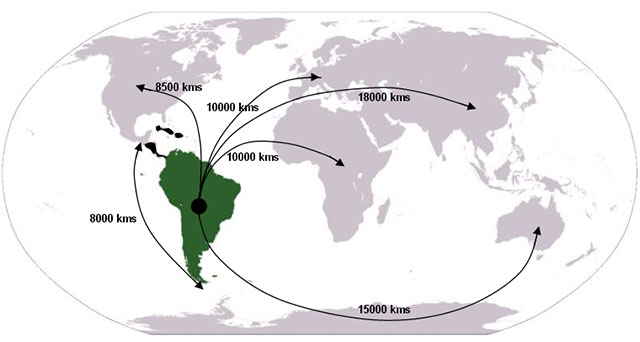Figure 1. Location of SA and distance to other ISSMGE regions